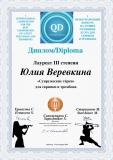 Diplomе3